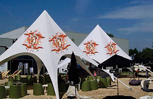 star tents for sale